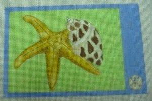 Starfish and Seashell